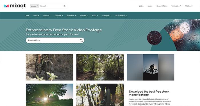 Free Stock Video Resource: Mixkit